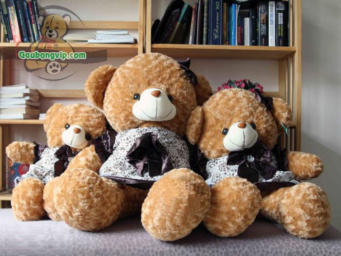 Kinh nghiệm mua gấu bông cao cấp mà nhiều người chưa biết